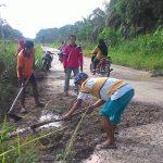 Jalan Penghubung Empat Kampung di Pesisir Sungai Siak Kecamatan Koto Gasib Sebagian masih Jalan Tanah