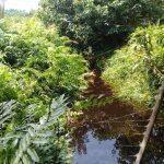 Masyarakat Mempertanyakan Normalisasi Sungai Penguang Kepada PT KTU