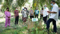 Bupati Alfedri Tinjau Perbatasan Siak-Kampar di Kampung Rantau Bertuah